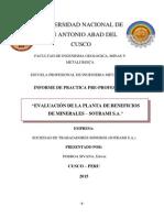 Informe de Practicas Planta de Beneficios Minera Sotrami s.A