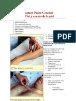 3.1 Examen Físico Piel
