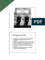 04 Procesos Interpersonales TCC
