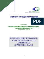 008. EIA-Sd YARINACOCHA_Resumen_Ejecutivo.pdf