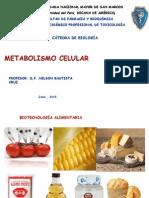Metabolismo Celular (1)