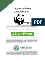 Organizaciones-ambientales