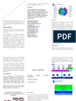 Sistema SAP