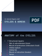 Eyelids & Adneksa