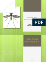 midterm case study ppt - heartworm infection in a dog