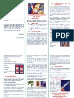 triptico de proyecto de investigacion.docx