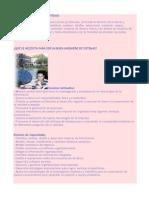 Perfil Del Ingeniero de Sitemas