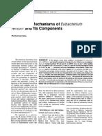 Asia Pacific J Allergy and Immunol 1995 (Antitumor Mechanisms of Eubacterium Lentum)
