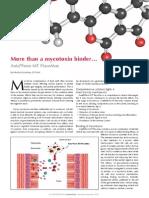 More than a mycotoxin binder… - Anta®Ferm MT FlavoMax