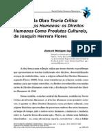 Resenha Teoria Critica DH Herrera Flores