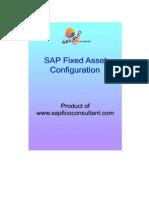 FI Asset Configuration ECC 6_preview