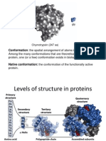 Protein Structure 15-16