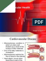 12-4 Cardiovascular Health Web