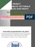Proiect RPS Organizatii Non-profit