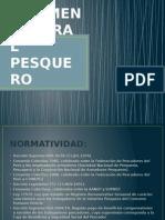 RÉGIMEN LABORAL PESQUERO