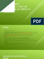 INSTITUCIONES VINCULADAS CON LAS EVALUACION DE IMPACTO AMBIENTAL (1).pptx