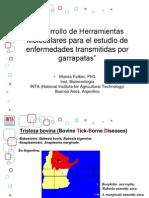 CTB Hemoparasitos Farber