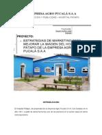 ESTRATEGIAS DE MARKETING PARA MEJORAR LA IMAGEN DEL HOSPITAL PÁTAPO DE LA EMPRESA AGRO PUCALÁ S.A.A
