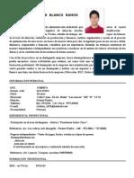 Curriculum Vitae Cristian Junior Blanco Ramos[1]