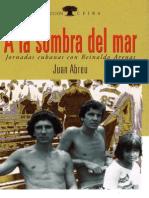 A la sombra del mar_Juan Abreu.pdf