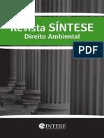 revistasntesedireitoambiental02-110809151410-phpapp01.pdf