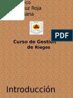 Terminologia de Gestion Del Riesgo y Desastre 1