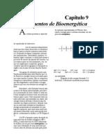 Fundamentos de Bioquimica - Ricardo Vieira