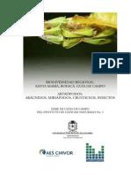 LIBRO ARTROPODOS  GUIA DE CAMPO.pdf