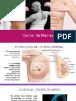 Cancer de Seno ( Presentacion)