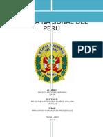 Monografia Principios y Garantias Procesales