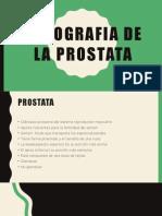 libreta prostata