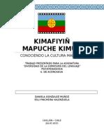 Trabajo Los Mapuches