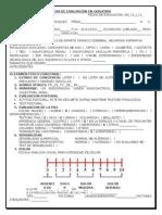Ficha de Evaluación en Geriatría