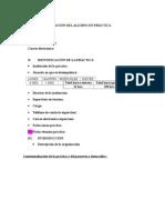 Formato Ayuda Informe de Practica Profesional