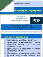 Pemanfaatan Rhizopus  oligosporus