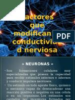 Conductividad nerviosa