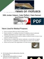 stem mollusc presentation