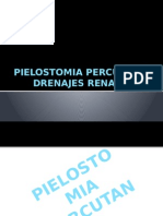 pielostomia percutanea