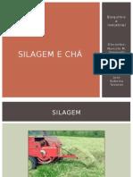 Bioquimica Livro Cha
