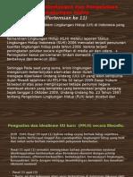 Pertemuan 11 Hukum Lingkungan