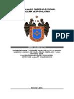 Perfil de Vialidad Ayacucho v1