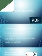 la orientacion educativa  en la etapa de la adolescencia -t- 1 maestria