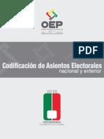 Separata Asientos Electorales