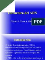 (Pregrado) ADN y ARN-II-15
