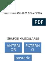 GRUPOS MUSCULARES DE LA PIERNA.pptx