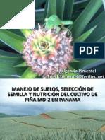 Biblioteca_280_Manejo de Suelos, Selección de Semilla y Nutrición Del Cultivo de PiñaMD-2 en Panama