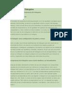 Congruencia de Triángulos.doc