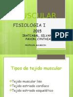 Muscular.pptx
