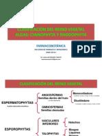 ALGAS Primera Parte- Farmacobotanica 2014-I- UNID