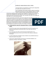 Licuefaccion en el Peru